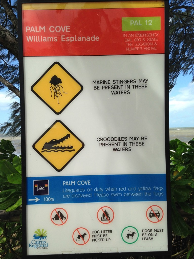 Yes, this is the signage at Palm Cove, where the swim  for Cairns Ironman and Cairns 70.3 was held! Terrifying!